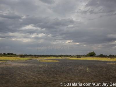 botswana, okavango delta, okavango, wilderness, wilderness safaris, calendar, when to go, best, wildlife, safari, photo safari, photo tour, photographic safari, photographic tour, photo workshop, wildlife photography, 50 safaris, 50 photographic safaris, kurt jay bertels, lion, kill, buffalo, relentless enemies, derek joubert, rain, clouds