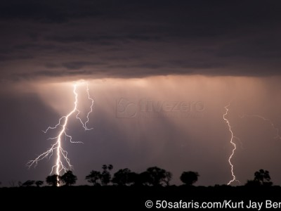 botswana, okavango delta, okavango, wilderness, wilderness safaris, calendar, when to go, best, wildlife, safari, photo safari, photo tour, photographic safari, photographic tour, photo workshop, wildlife photography, 50 safaris, 50 photographic safaris, kurt jay bertels, lion, kill, buffalo, relentless enemies, derek joubert, lightning, bolt, storm, clouds