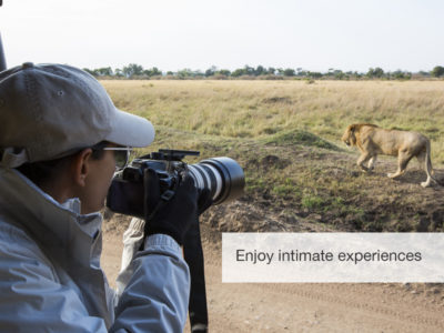 Great migration safari, fivezero safaris