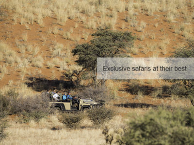Kalahari Safari, FiveZero Safaris
