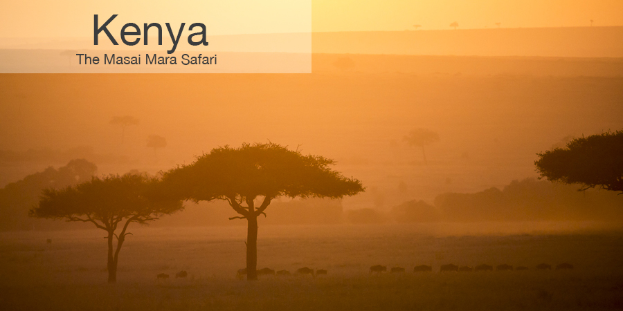 FiveZero Safaris, safari, africa, kenya, great migration, masai mara