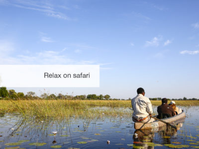 Okavango Delta, Safari, Botswana, Fivezero Safaris