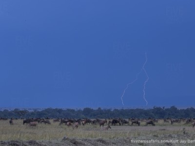 photo safari, photographic safari, wildlife photographic safari, photo tour, photo workshop, when to go, best, fivezero safaris, five zero, safari, kurt jay bertels, kenya, masai mara, great migration, lightning