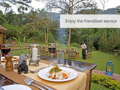 Great apes safari, Uganda, Safari, FiveZero Safaris