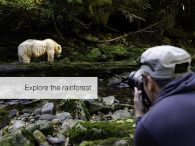 Spirit Bear Safari, FiveZero Safaris